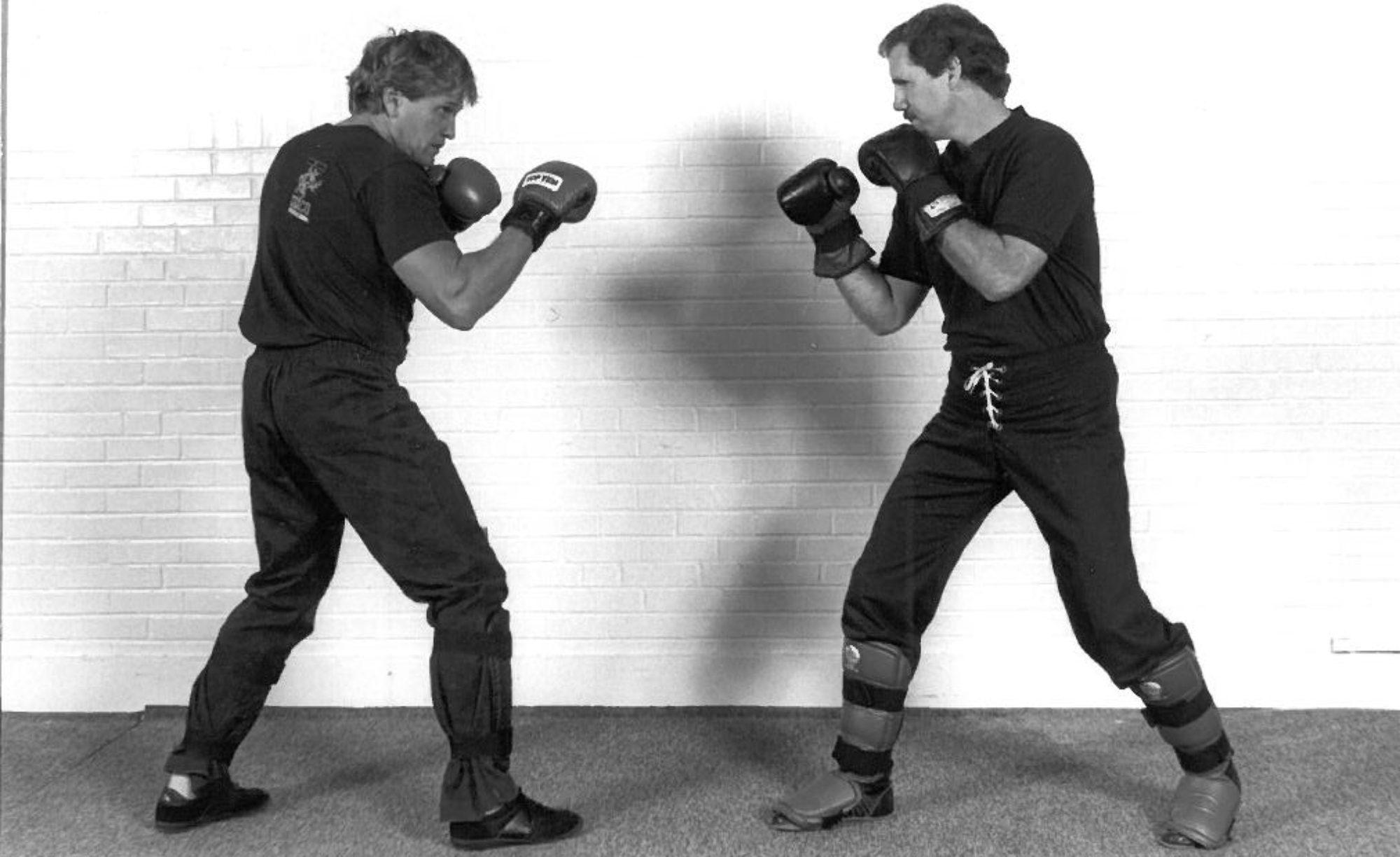 Joe Lewis American Karate Systems